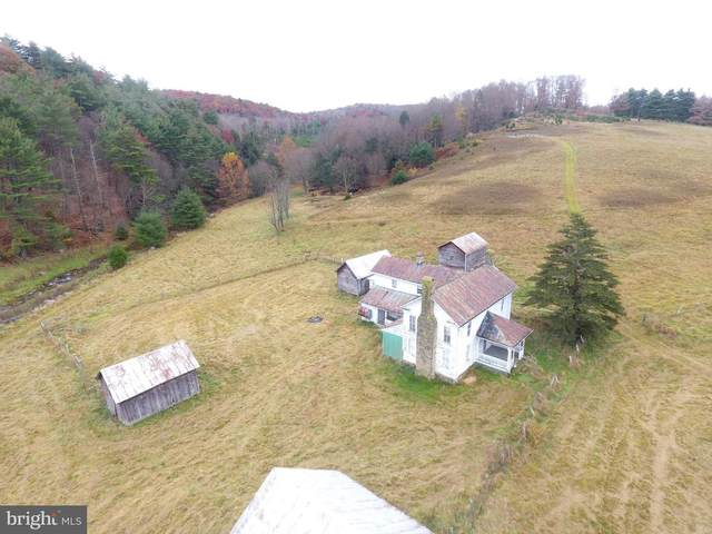 224 Acres Black Thorn, SUGAR GROVE, WV 26815 (#WVPT101588) :: Blackwell Real Estate