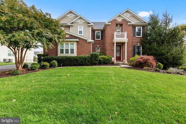 21922 Colonial Hills Drive, ASHBURN, VA 20148 (#VALO424826) :: The Dailey Group