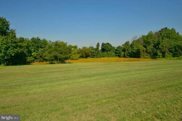 39501 Meadowlark Drive, HAMILTON, VA 20158 (#VALO424846) :: The Dailey Group