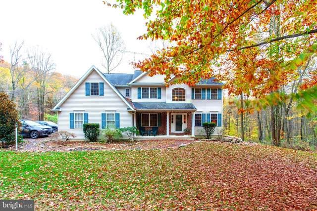 93 Sandy Hill Road, BOYERTOWN, PA 19512 (#PABK366548) :: Murray & Co. Real Estate