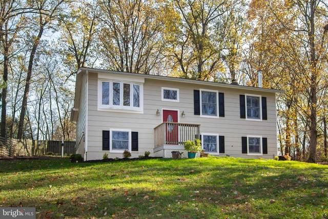 11811 Pine Tree Court, MONROVIA, MD 21770 (#MDFR273238) :: Jim Bass Group of Real Estate Teams, LLC