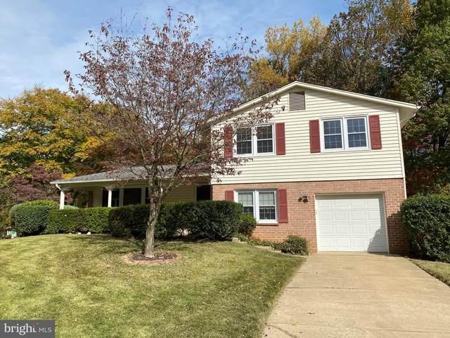 4831 Gainsborough Drive, FAIRFAX, VA 22032 (#VAFX1164936) :: Great Falls Great Homes