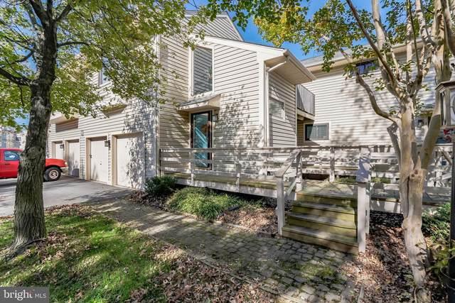 8 Mariners Way #3, STEVENSVILLE, MD 21666 (#MDQA145848) :: Great Falls Great Homes