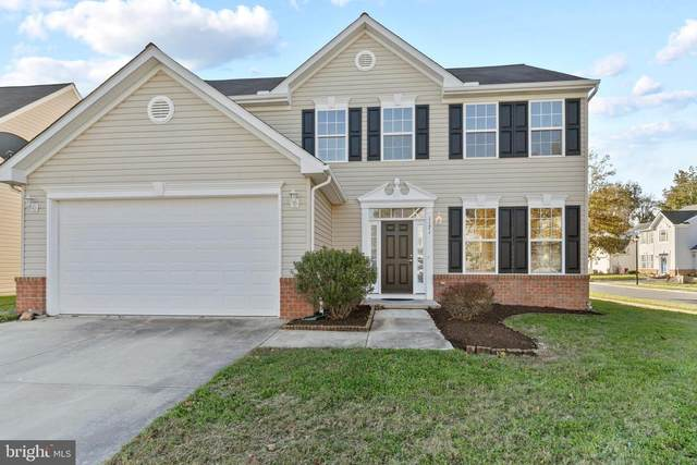 1121 Osprey Lane, DENTON, MD 21629 (#MDCM124728) :: Great Falls Great Homes