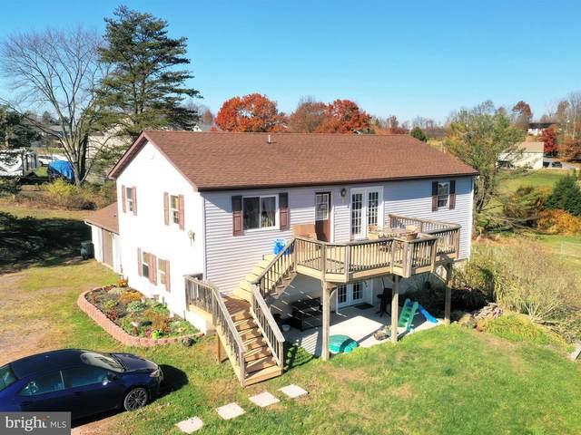1667 Wampum Drive, AUBURN, PA 17922 (#PASK133098) :: Better Homes Realty Signature Properties