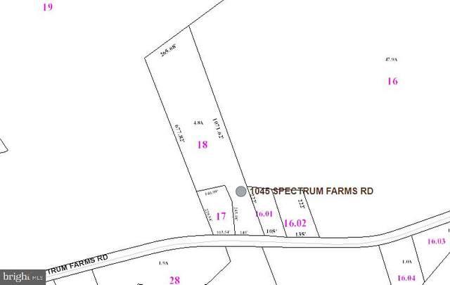 1045 Spectrum Farms Road, FELTON, DE 19943 (#DEKT243360) :: Loft Realty