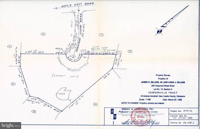 205 Dogwood Slope Road, GREENVILLE, DE 19807 (#DENC512606) :: The John Kriza Team