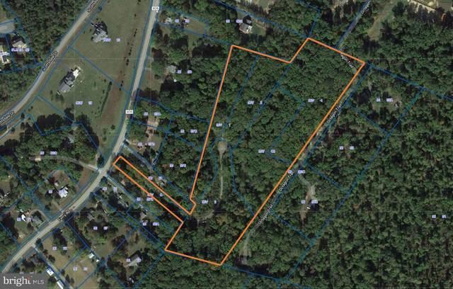 Karisa Ellen Court, FREDERICKSBURG, VA 22405 (#VAST226978) :: Sunrise Home Sales Team of Mackintosh Inc Realtors