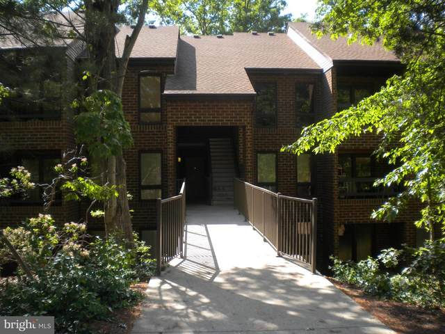 23241 Rosewood Court #1016, CALIFORNIA, MD 20619 (#MDSM172874) :: Gail Nyman Group