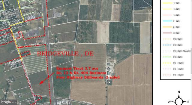 9179 Rifle Range Road, BRIDGEVILLE, DE 19933 (#DESU172622) :: LoCoMusings