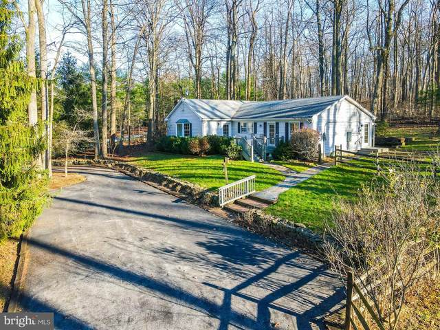 32651 Mount Weather Road, BLUEMONT, VA 20135 (#VACL111906) :: Peter Knapp Realty Group