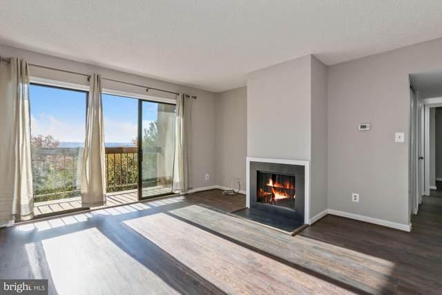 807 N Howard Street #318, ALEXANDRIA, VA 22304 (#VAAX253054) :: Jacobs & Co. Real Estate