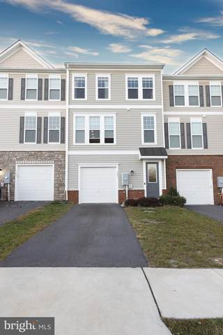 103 Biscane Court, WINCHESTER, VA 22602 (#VAFV160728) :: Ultimate Selling Team