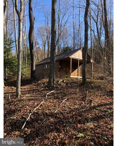 Parcel 37 Frostburg Rd, FROSTBURG, MD 21532 (#MDGA133906) :: Charis Realty Group