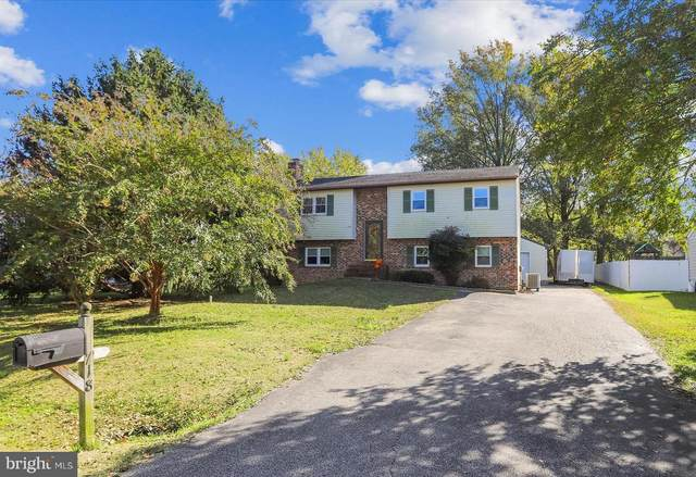 718 Kimberly Way, STEVENSVILLE, MD 21666 (#MDQA145882) :: Bright Home Group