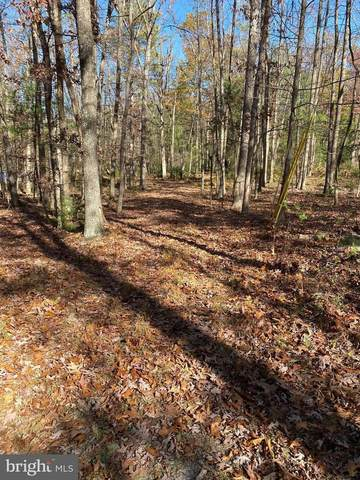 Cub Road Lot 3, WARDENSVILLE, WV 26851 (#WVHD106456) :: Revol Real Estate