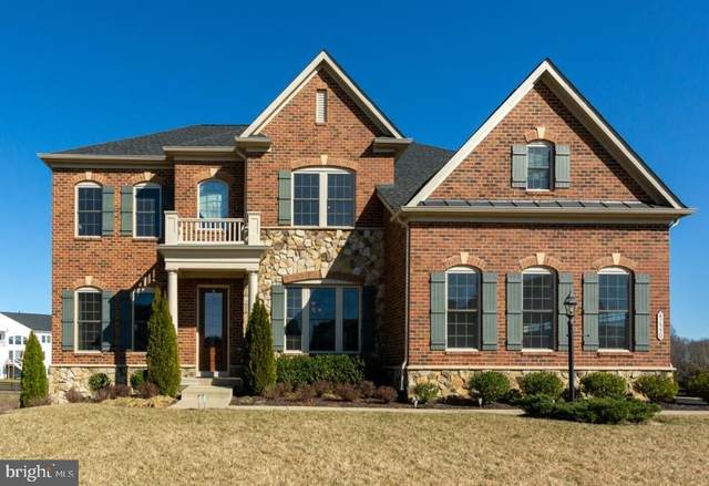 42550 Madturkey Run Place, CHANTILLY, VA 20152 (#VALO425238) :: The Redux Group