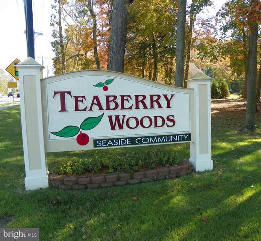 Teaberry Circle, SELBYVILLE, DE 19975 (#DESU172772) :: Dawn Wolf Team