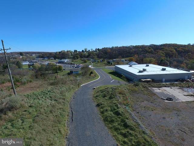 4 Solid Oak Drive, ROMNEY, WV 26757 (#WVHS114942) :: Hill Crest Realty