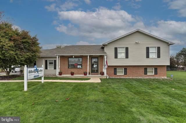 397 Kunkel Avenue, HUMMELSTOWN, PA 17036 (#PADA127542) :: Linda Dale Real Estate Experts