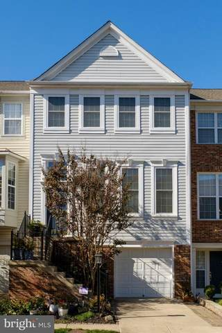 7516 Lamoyne Court, ALEXANDRIA, VA 22315 (#VAFX1165974) :: Great Falls Great Homes