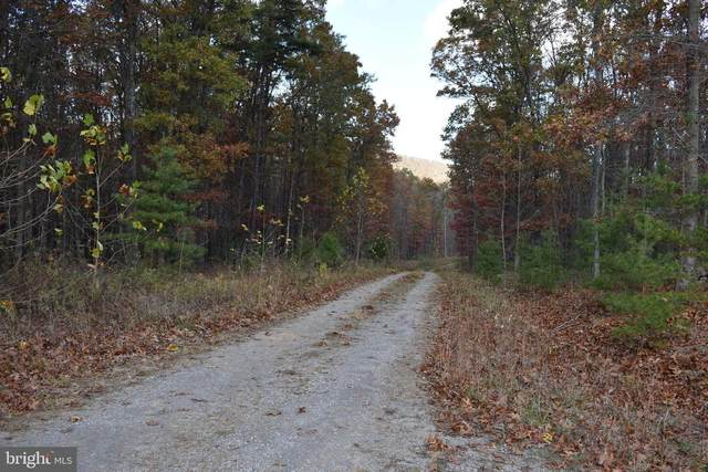 Lot 10 Cabin Run Road, BLOOMERY, WV 26817 (#WVHS114958) :: The Redux Group