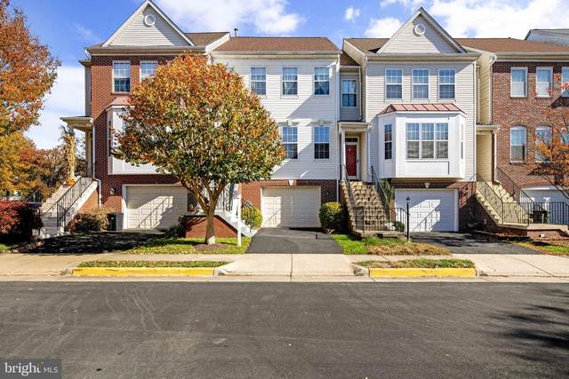 7755 Desiree Street, ALEXANDRIA, VA 22315 (#VAFX1166048) :: Great Falls Great Homes