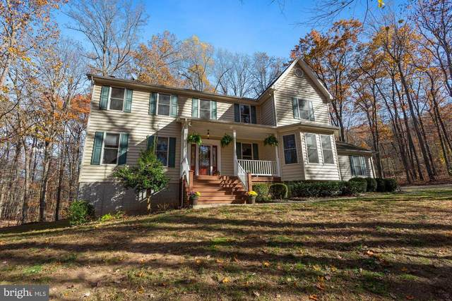 2575 Frogtown Road, BLUEMONT, VA 20135 (#VACL111918) :: The Sky Group
