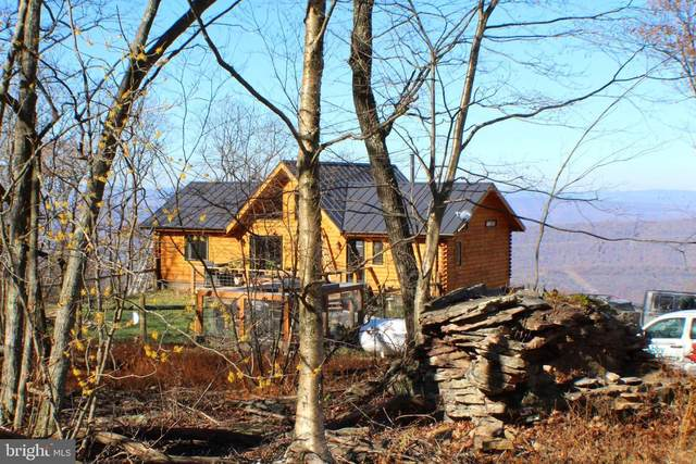 5982 South Branch Mountain Road, MOOREFIELD, WV 26836 (#WVHD106462) :: Better Homes Realty Signature Properties