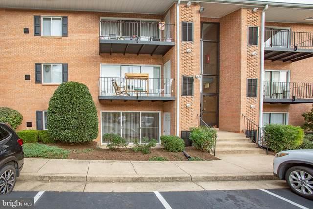 1805-A William Street #1, FREDERICKSBURG, VA 22401 (#VAFB118118) :: RE/MAX Cornerstone Realty