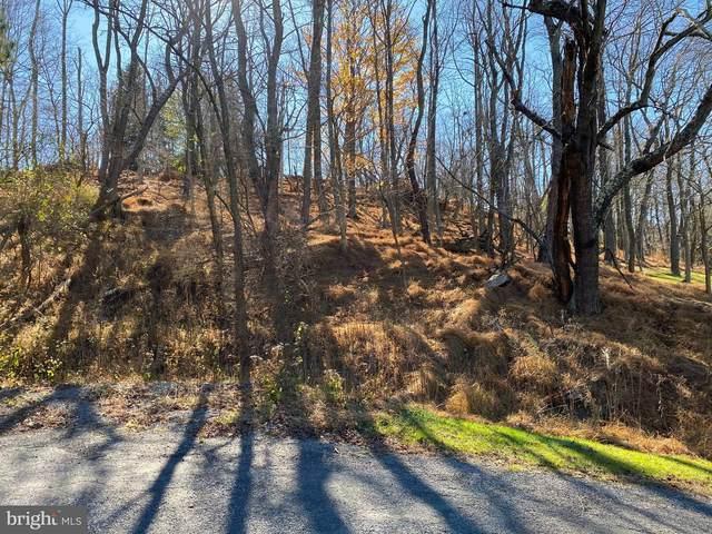 Horse Rock Road, WESTERNPORT, MD 21562 (#MDAL135752) :: AJ Team Realty