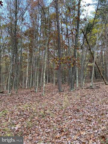 Hollybush Ln Lot 4A, BERKELEY SPRINGS, WV 25411 (#WVMO117746) :: SURE Sales Group