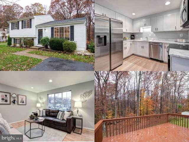 8504 Rippled Creek Court, SPRINGFIELD, VA 22153 (#VAFX1166160) :: The MD Home Team