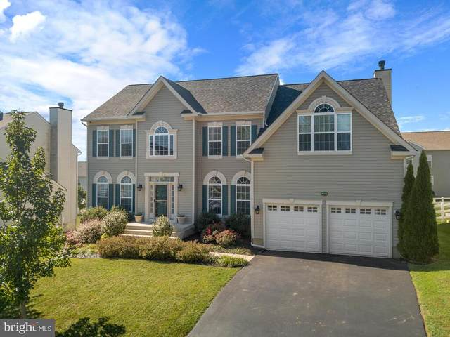 36075 Welland Drive, ROUND HILL, VA 20141 (#VALO425392) :: The Redux Group