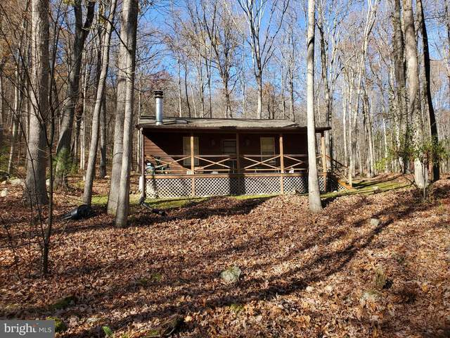 642 Wild Turkey Ridge, LOST CITY, WV 26810 (#WVHD106466) :: The Sky Group