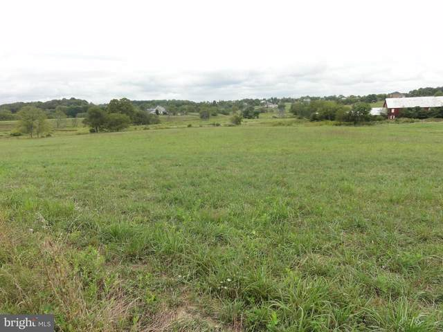 LOT 17 Greenwood Farm Lane, PURCELLVILLE, VA 20132 (#VALO425430) :: Pearson Smith Realty