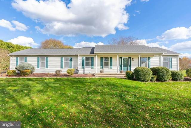 248 Oak Drive, MIDDLETOWN, DE 19709 (#DENC513036) :: The John Kriza Team