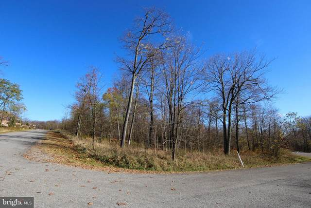 Lot 28 Old Camp Rd, MC HENRY, MD 21541 (#MDGA133934) :: AJ Team Realty