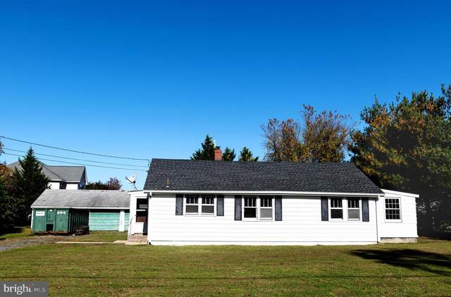 719 Camp Road, DENTON, MD 21629 (#MDCM124760) :: Better Homes Realty Signature Properties