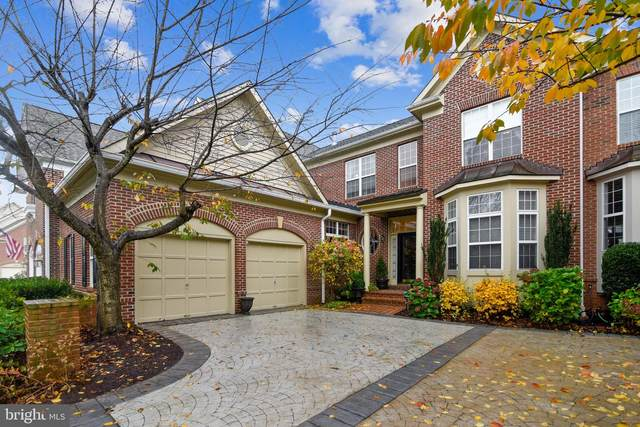 18459 Lanier Island Square, LEESBURG, VA 20176 (#VALO425556) :: The Redux Group