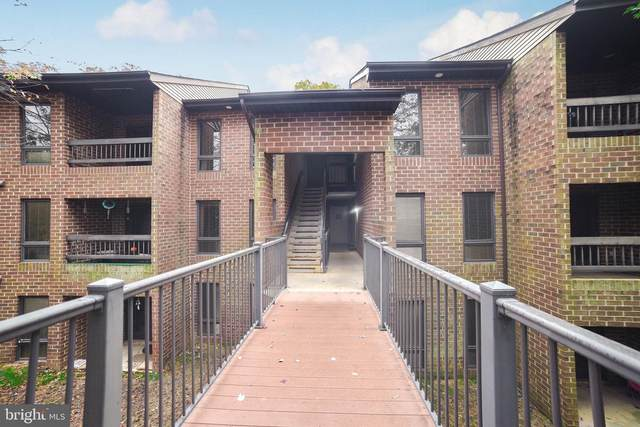 23238 Rosewood Court #1045, CALIFORNIA, MD 20619 (#MDSM173030) :: The Miller Team