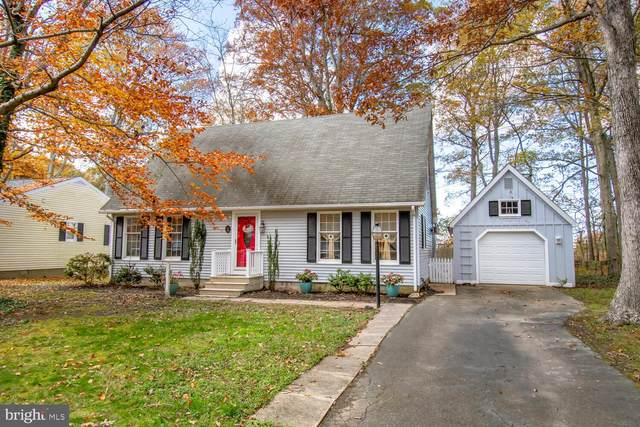 29179 Pin Oak Way, EASTON, MD 21601 (#MDTA139800) :: Bright Home Group