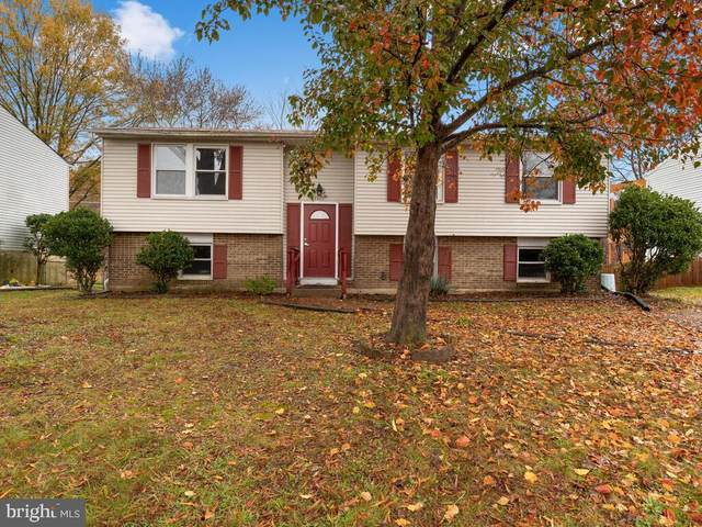 4820 Welford Street, ALEXANDRIA, VA 22309 (#VAFX1166922) :: The Riffle Group of Keller Williams Select Realtors