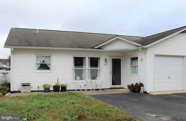 237 Magnolia Drive, MILLSBORO, DE 19966 (#DESU173174) :: Bright Home Group