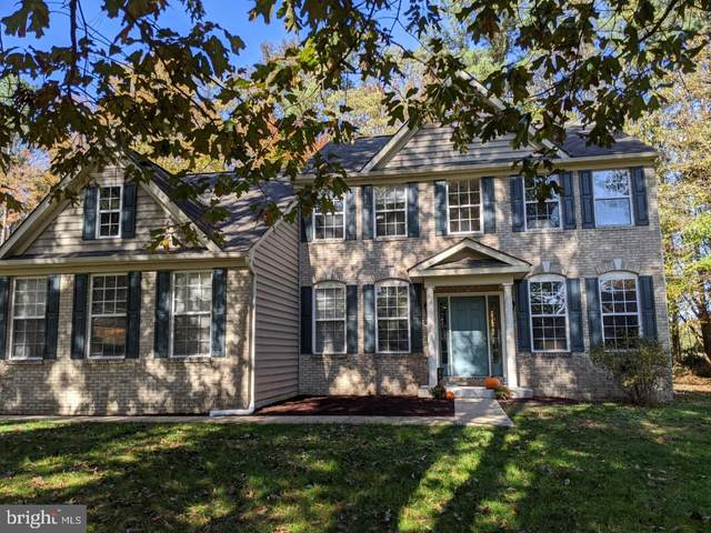 29711 Springwood Drive, MILLSBORO, DE 19966 (#DESU173172) :: The Allison Stine Team