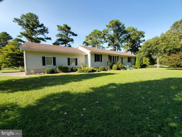 5110 Old Auger Road, CRISFIELD, MD 21817 (#MDSO104138) :: Atlantic Shores Sotheby's International Realty