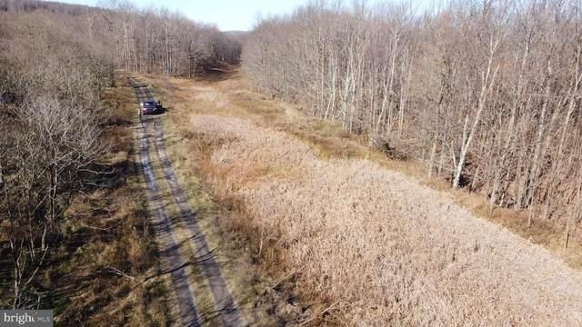 Bismarck Road/Lead Road, MOUNT STORM, WV 26739 (#WVGT103358) :: Erik Hoferer & Associates