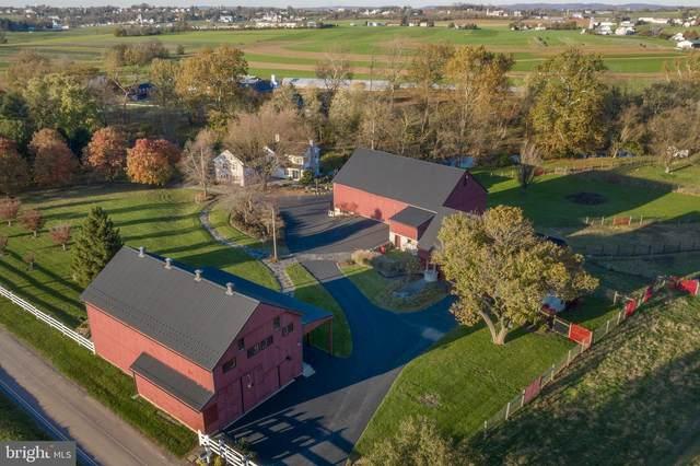 286 Conestoga Creek Road, EAST EARL, PA 17519 (#PALA173664) :: The Joy Daniels Real Estate Group
