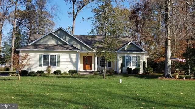 29296 River Rock Way, MILTON, DE 19968 (#DESU173236) :: Better Homes Realty Signature Properties