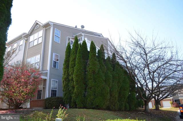 16 Crusader Court, GERMANTOWN, MD 20874 (#MDMC735260) :: The Sky Group